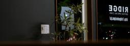 師走の  rdg by ミニ・ミニクーパーのスペシャルショップ – 滋賀県【リッジデザインズ】